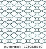 seamless geometric ornamental... | Shutterstock .eps vector #1250838160