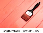 living coral fresh painted...   Shutterstock . vector #1250848429