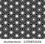 black and white seamless modern ... | Shutterstock .eps vector #1250852656