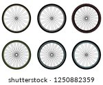 bicycle wheels. vector isolated. | Shutterstock .eps vector #1250882359