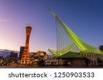 kobe  hyogo  japan   november... | Shutterstock . vector #1250903533