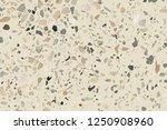 vector eps10 terrazzo pattern...   Shutterstock .eps vector #1250908960