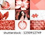 creative collage in living... | Shutterstock . vector #1250912749