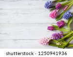 flowers hyacinths and tulips on ...   Shutterstock . vector #1250941936
