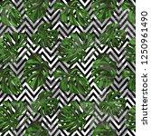 monstera pattern.  exotic palm... | Shutterstock .eps vector #1250961490