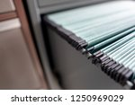 important documents in the... | Shutterstock . vector #1250969029
