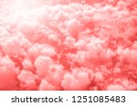 living coral color of the year... | Shutterstock . vector #1251085483