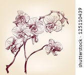 floral orchid hand drawn vector | Shutterstock .eps vector #125110439