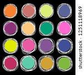 set of irregular grungy round... | Shutterstock .eps vector #1251118969