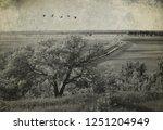 Agricultural Rural Landscape....