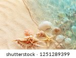Starfish And Seashell On The...