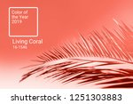 living coral color of the year...   Shutterstock . vector #1251303883