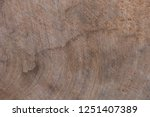 close up rustic wood table with ... | Shutterstock . vector #1251407389
