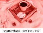cup of coffee on tray ... | Shutterstock . vector #1251410449