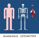 human anatomy pixel art. 8bit... | Shutterstock .eps vector #1251467353