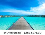 tropical beach in maldives with ... | Shutterstock . vector #1251567610