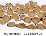 cut and stacked firewood logs.... | Shutterstock . vector #1251569506