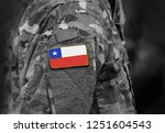 flag of chile on soldiers arm.... | Shutterstock . vector #1251604543
