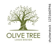 beautiful logo olive tree on... | Shutterstock .eps vector #1251660946