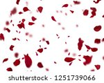 Stock photo rose petals stock image 1251739066