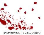 Stock photo rose petals stock image 1251739090