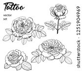set of images of roses....   Shutterstock .eps vector #1251904969