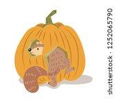 A Squirrel In Pumpkin Vector...