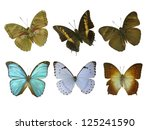 six butterfly white | Shutterstock . vector #125241590