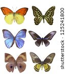 six butterfly on white | Shutterstock . vector #125241800