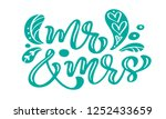 mr and mrs turquoise... | Shutterstock . vector #1252433659