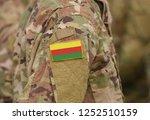 flag of democratic federation... | Shutterstock . vector #1252510159