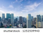 cityscape of tokyo city skyline ...   Shutterstock . vector #1252539943