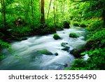 "tourist attraction ""oirase... | Shutterstock . vector #1252554490"