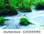 "tourist attraction ""oirase... | Shutterstock . vector #1252554493"