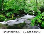 "tourist attraction ""oirase... | Shutterstock . vector #1252555540"