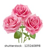 Stock photo pink roses bunch isolated on white background 125260898