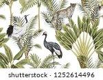 tropical vintage botanical... | Shutterstock .eps vector #1252614496