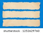 torn pieces of paper with copy... | Shutterstock . vector #1252629760