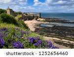 St Andrews Castle Ruins On...