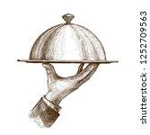 waiter hand holding cloche... | Shutterstock .eps vector #1252709563