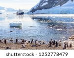 touristic cruise ship in the... | Shutterstock . vector #1252778479