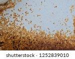 metal rust background  decay... | Shutterstock . vector #1252839010