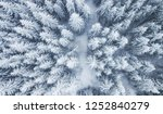 aerial view at the winter... | Shutterstock . vector #1252840279