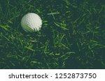 golf  sports turf has been...   Shutterstock . vector #1252873750