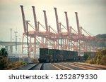seattle  wa   aug 14  crane... | Shutterstock . vector #1252879330