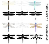 vector  isolated  dragonfly... | Shutterstock .eps vector #1252952053