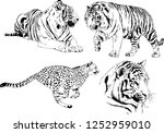 set of vector drawings on the... | Shutterstock .eps vector #1252959010