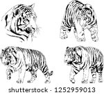 set of vector drawings on the... | Shutterstock .eps vector #1252959013