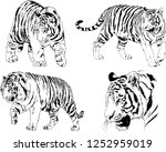 set of vector drawings on the... | Shutterstock .eps vector #1252959019