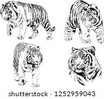 set of vector drawings on the... | Shutterstock .eps vector #1252959043